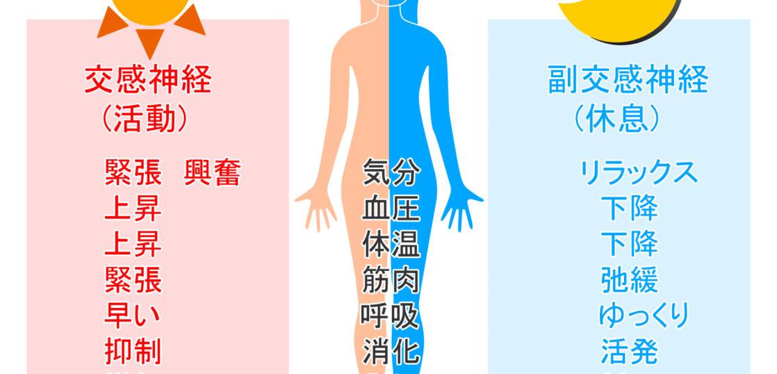 自律神経と腰痛